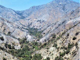 Big Santa Anita Canyon After Fire 2020