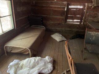 Bear damage in the Ranger Cabin